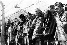 (老照片)战争年代纳粹分子凌虐下的平民生活